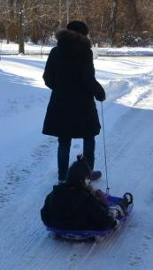 sled (2)